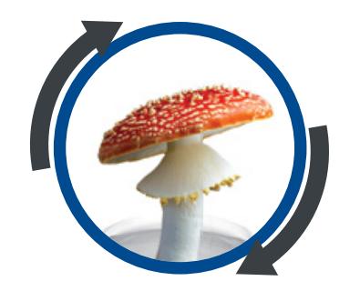 fungicid logo
