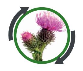 herbicidi logo