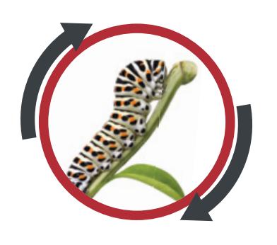 insekticid logo